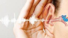Relaton - lepší sluch – česká republika – prodejna – kapky