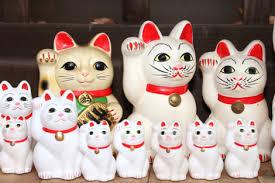 Lucky cat - dr max - zda webu výrobce? - kde koupit - heureka - v lékárně