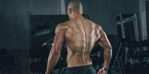 Muscles Detector - forum - výsledky - recenze - diskuze