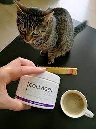 Premium Collagen5000 - objednat - hodnocení - cena - prodej
