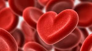 Cardione - cena - objednat - - prodej hodnocení
